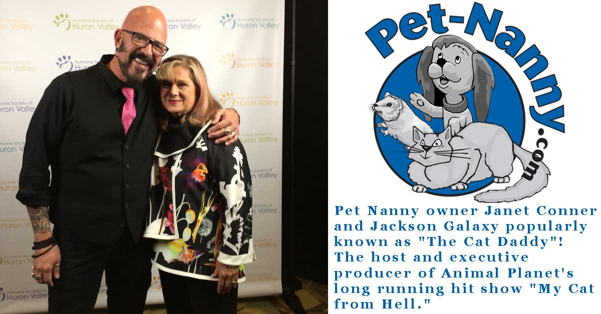 Pet Nanny and the Cat Daddy
